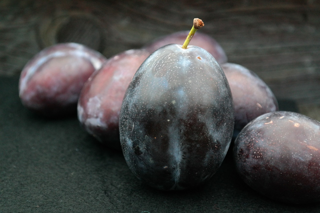real plums plums large free photo