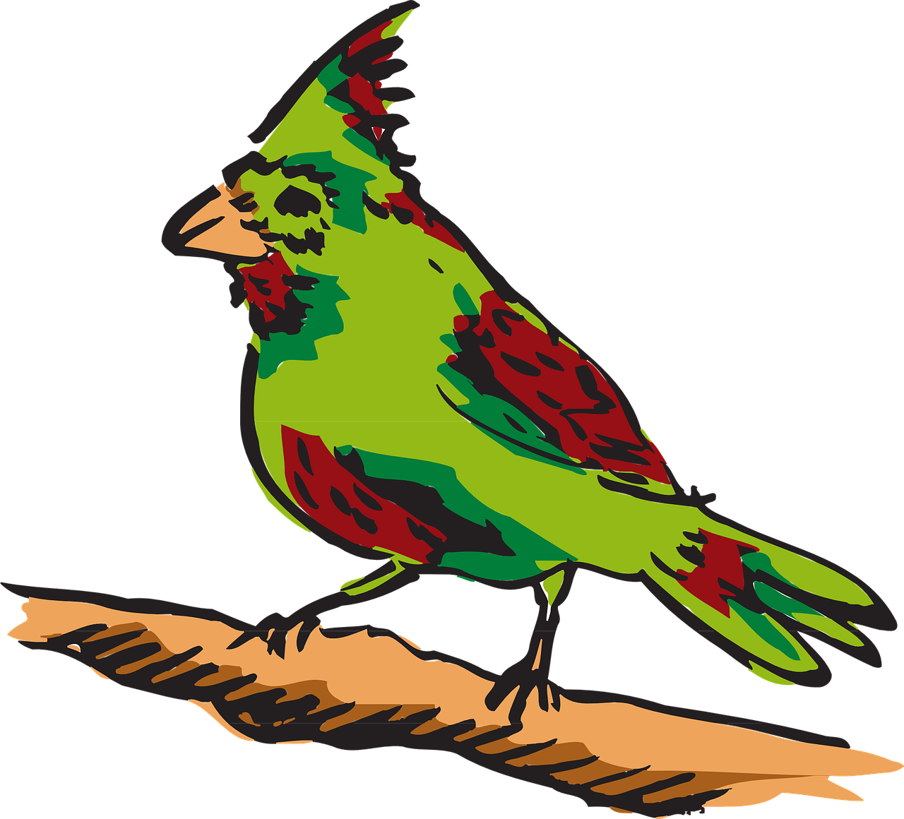 red green bird free photo