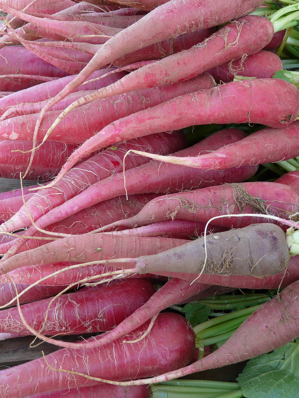red radish radish vegetables free photo