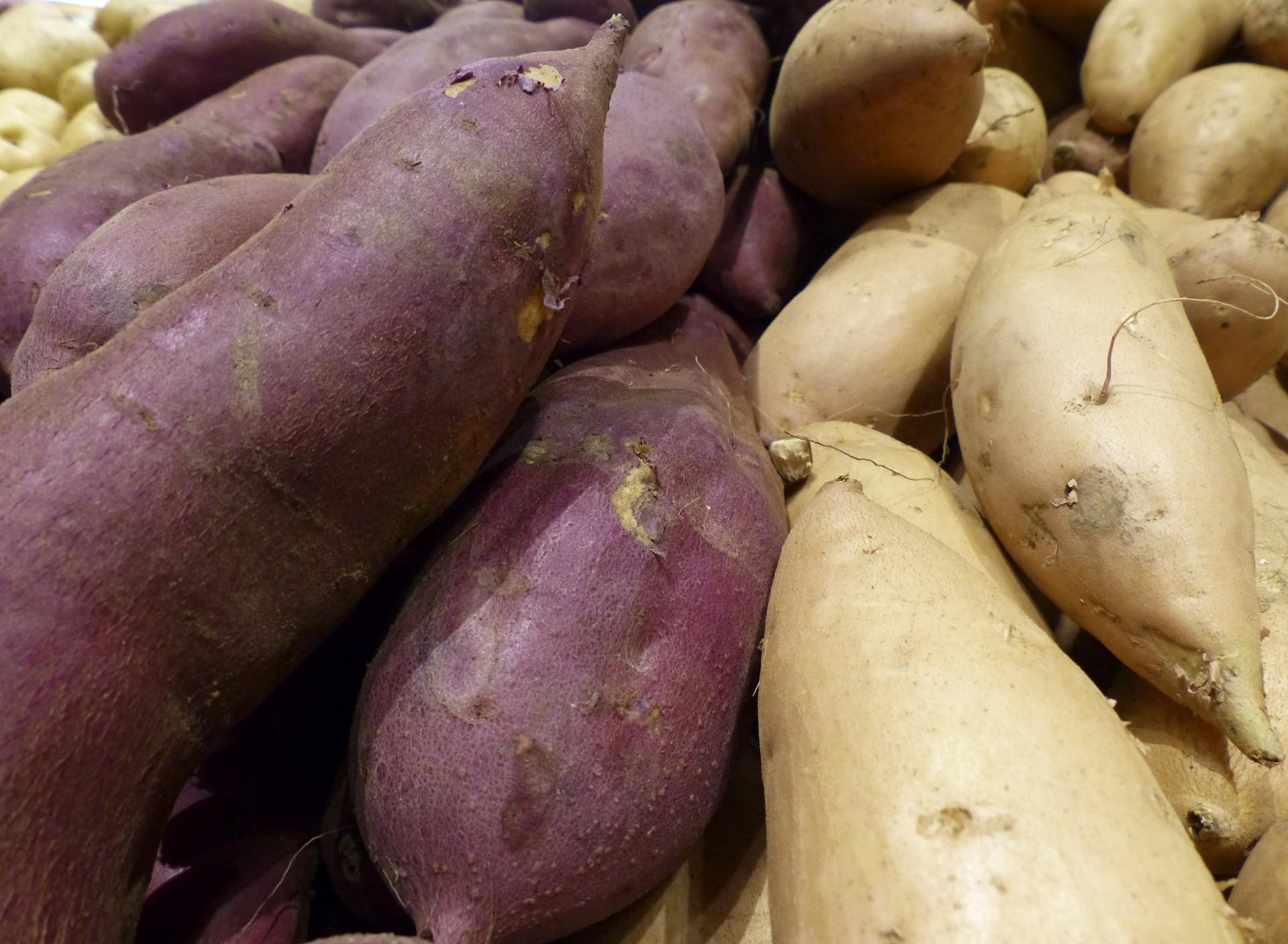 Yams,fresh,produce,market,thanksgiving - free image from needpix.com