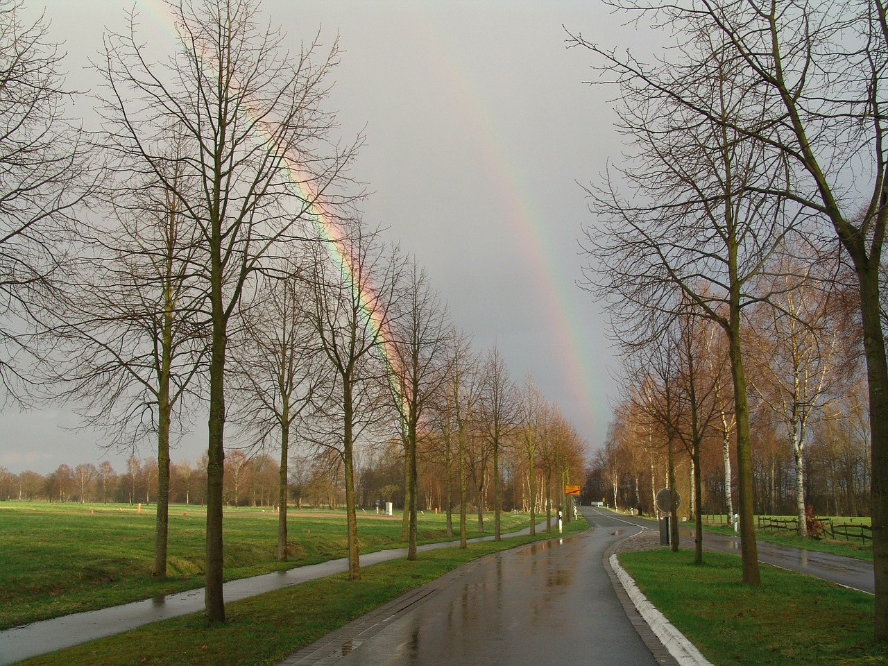 regenboge double rainbow free photo