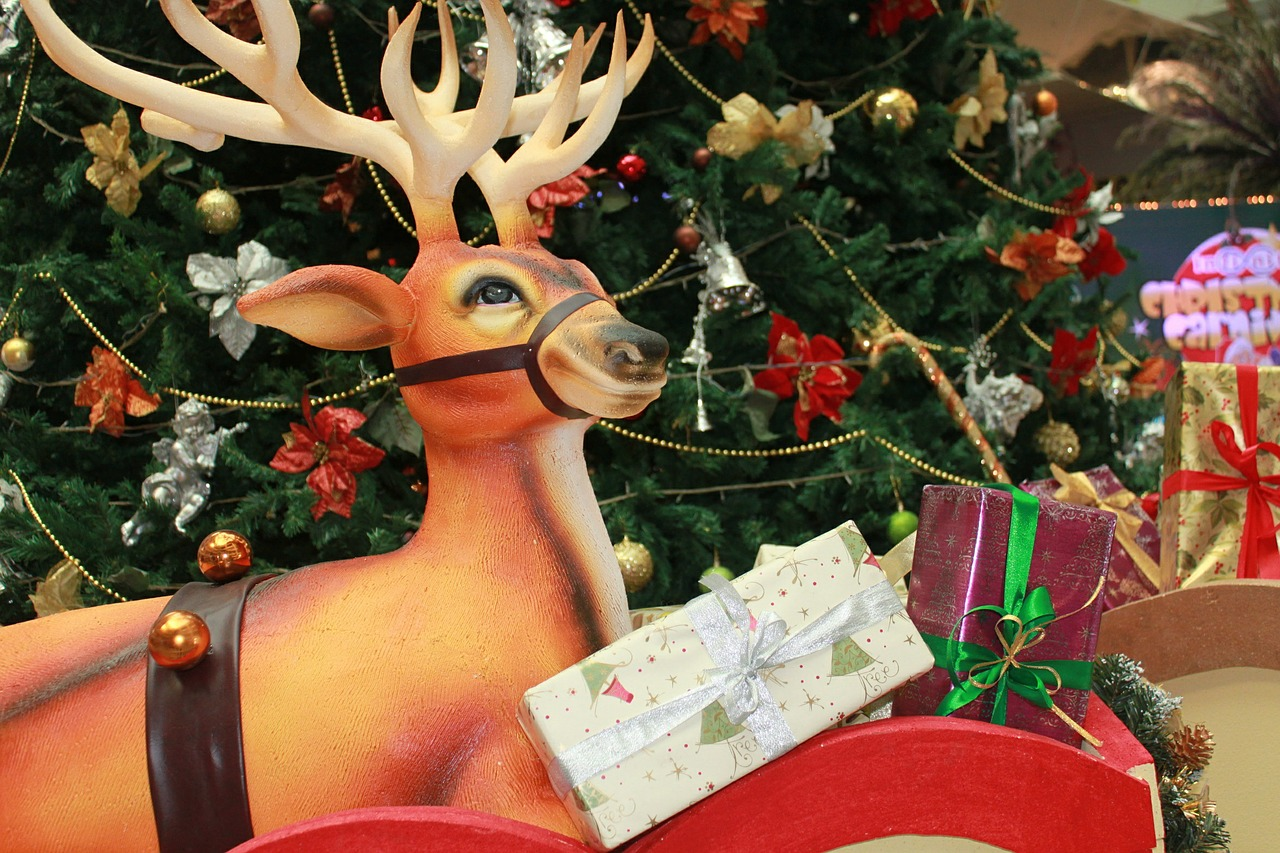 reindeer christmas decoration free picture