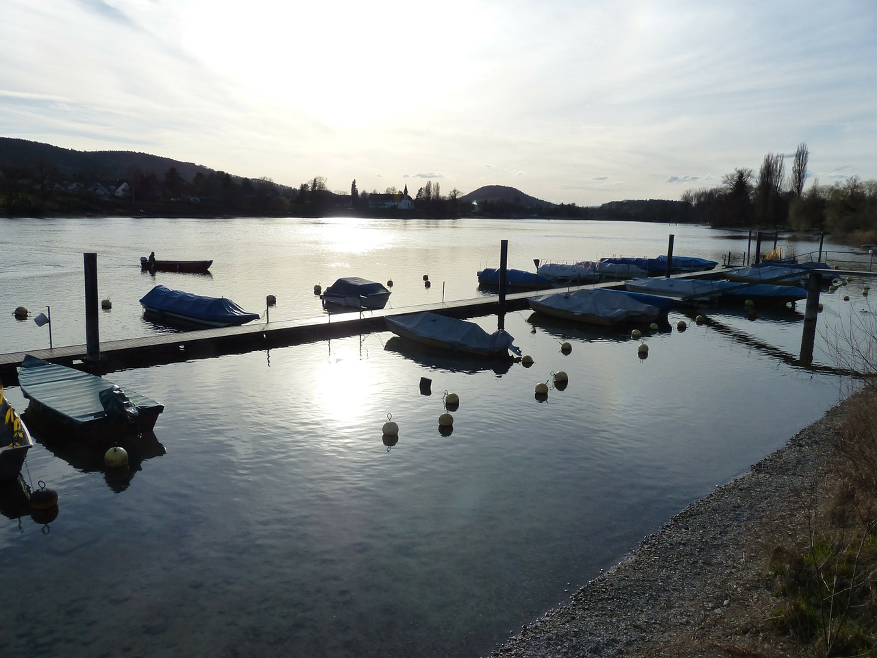 rhine river boats free photo