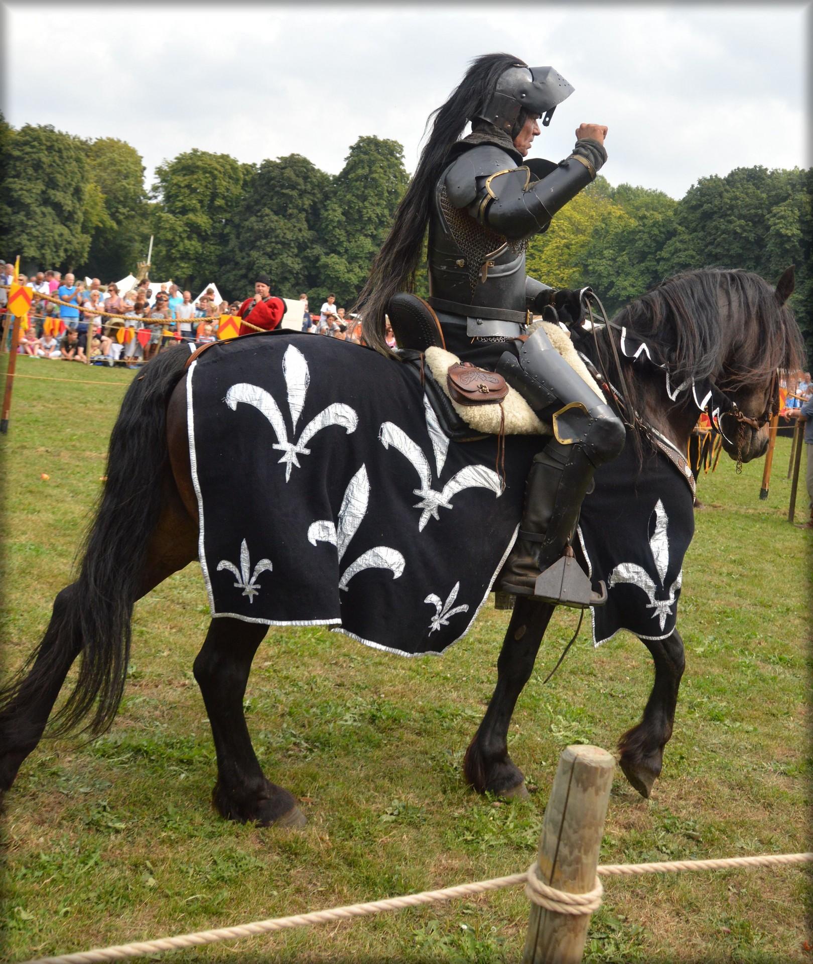 рыцари на лошадях картинки сделала очень объёмное