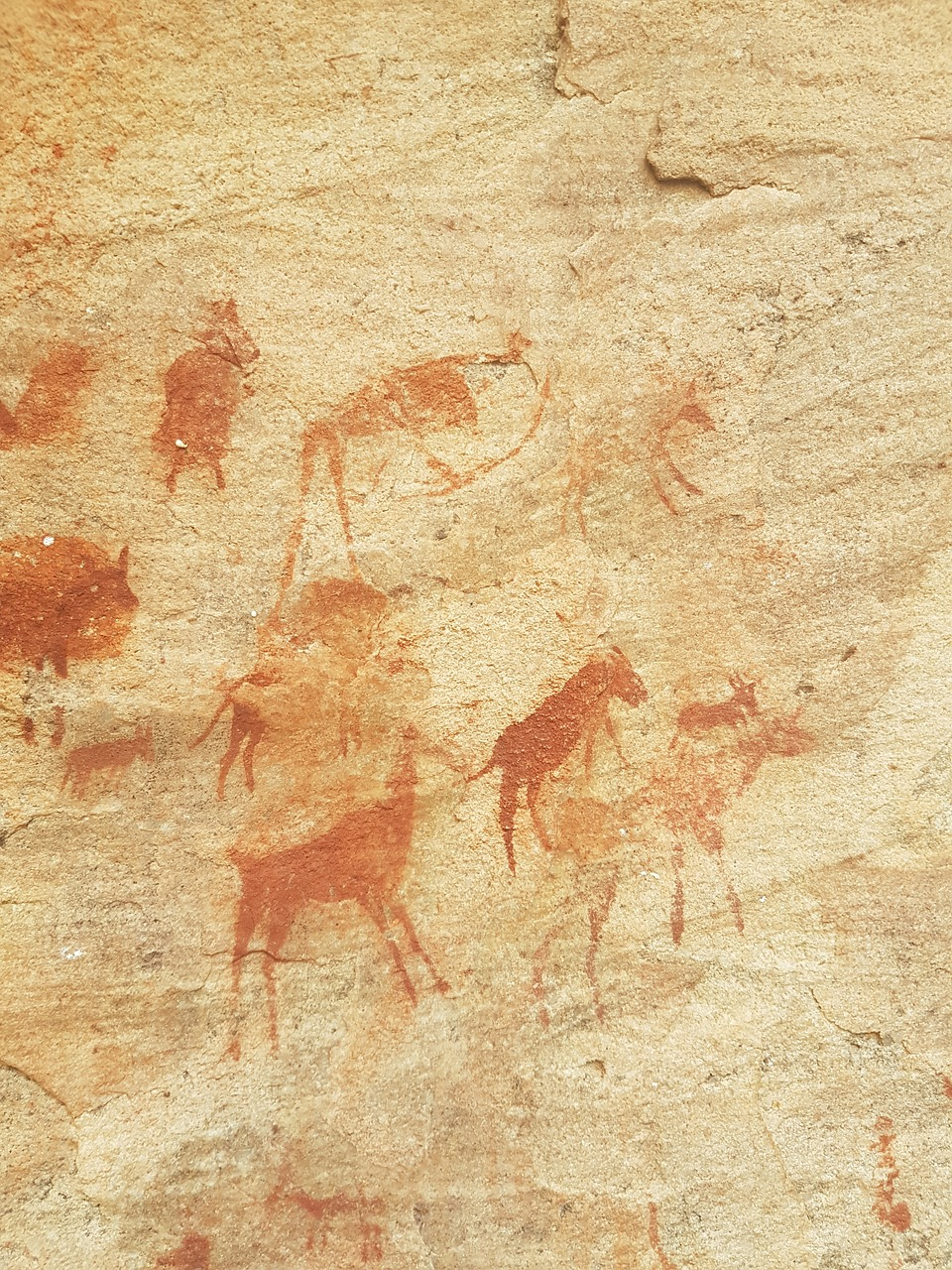 rock art painting africa free photo