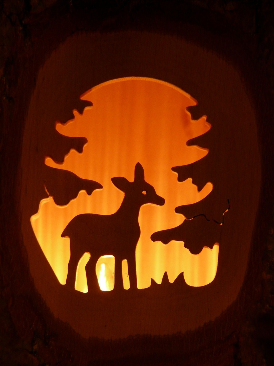 roe deer forest carving free photo