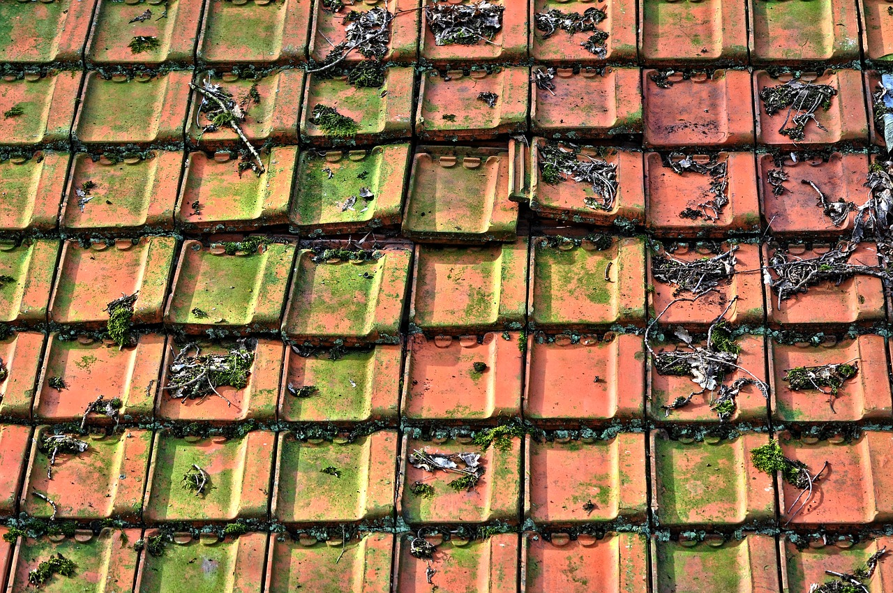 Rooftilestiled Roofroof Tilesceramic Free Photo From Needpix