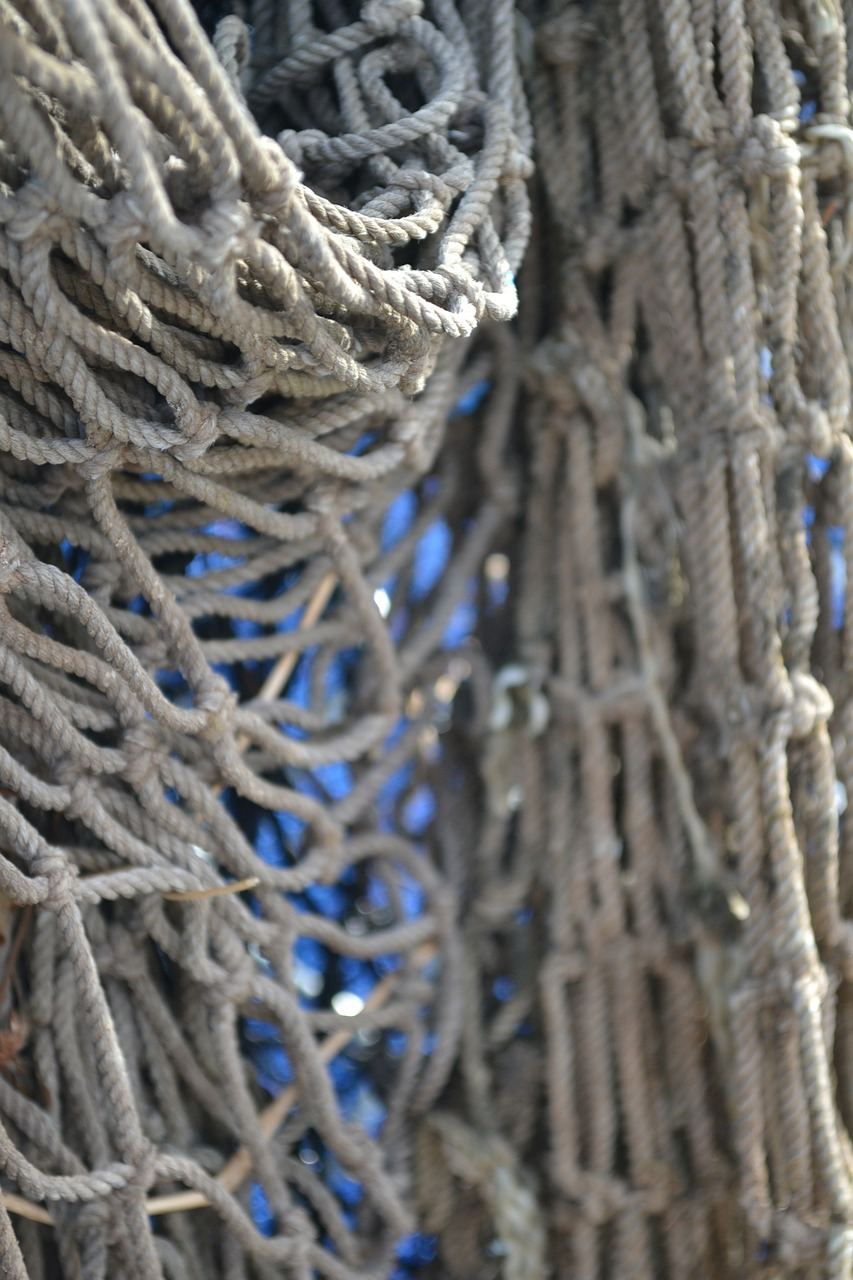 rope net cargo free photo