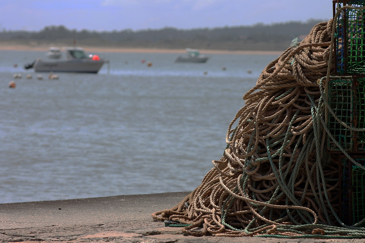 ropes,mar,fishing,free pictures, free photos, free images, royalty free, free illustrations