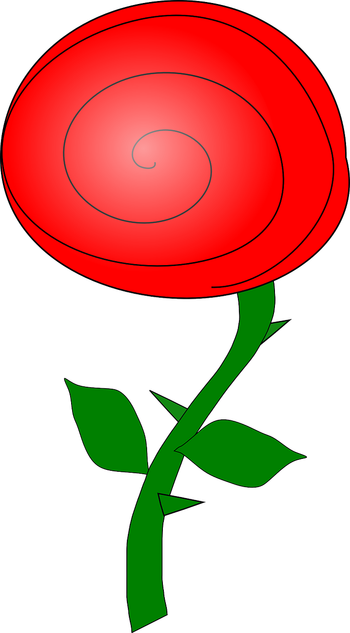 rose,red,flower,plant,love,floral,bud,bloom,spring,romance,perrennial,thorns,blossom,stem,rosebud,free vector graphics,free pictures, free photos, free images, royalty free, free illustrations, public domain