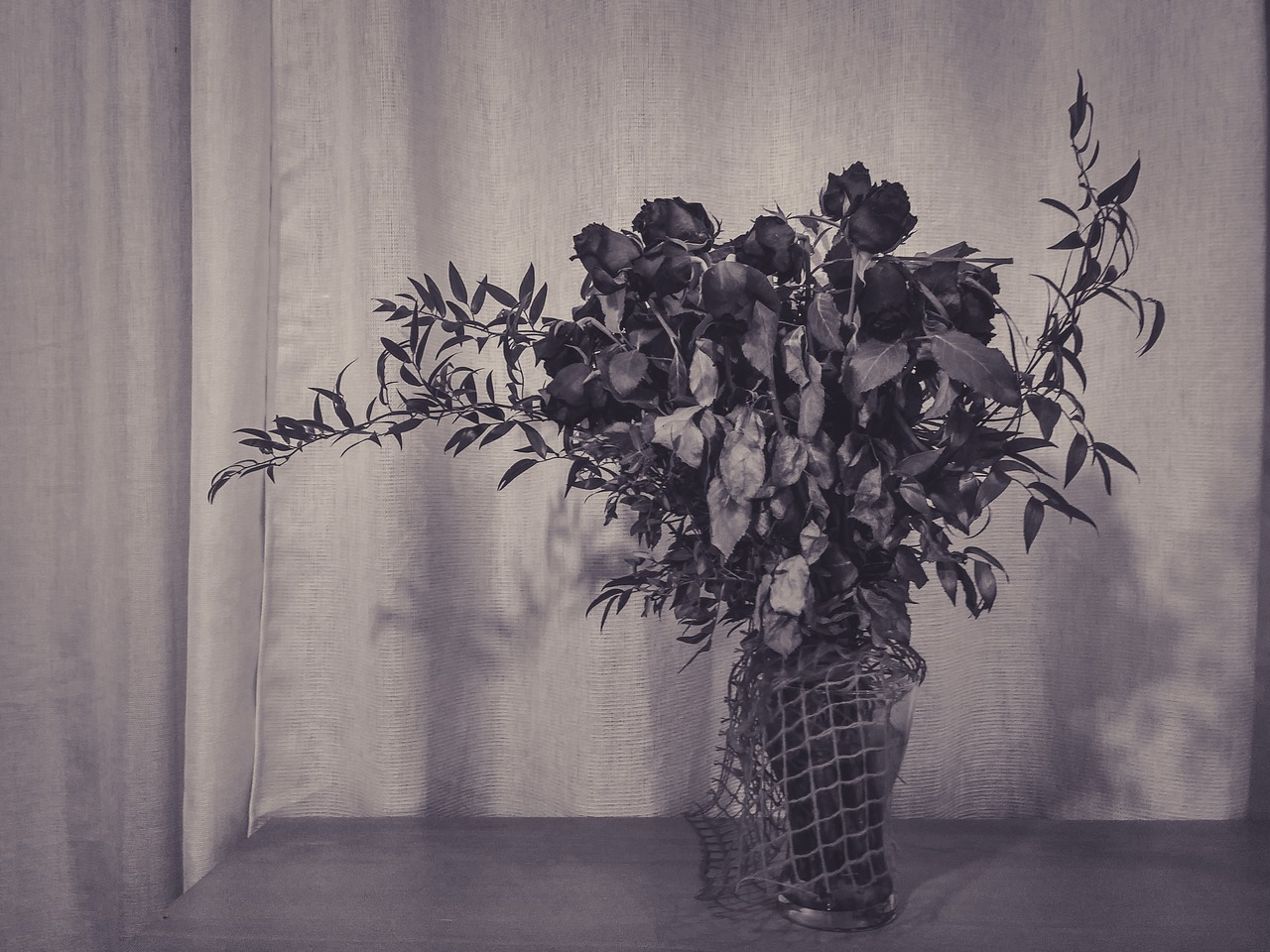 Rosesflowersblack And Whitetablebouquet Free Photo From