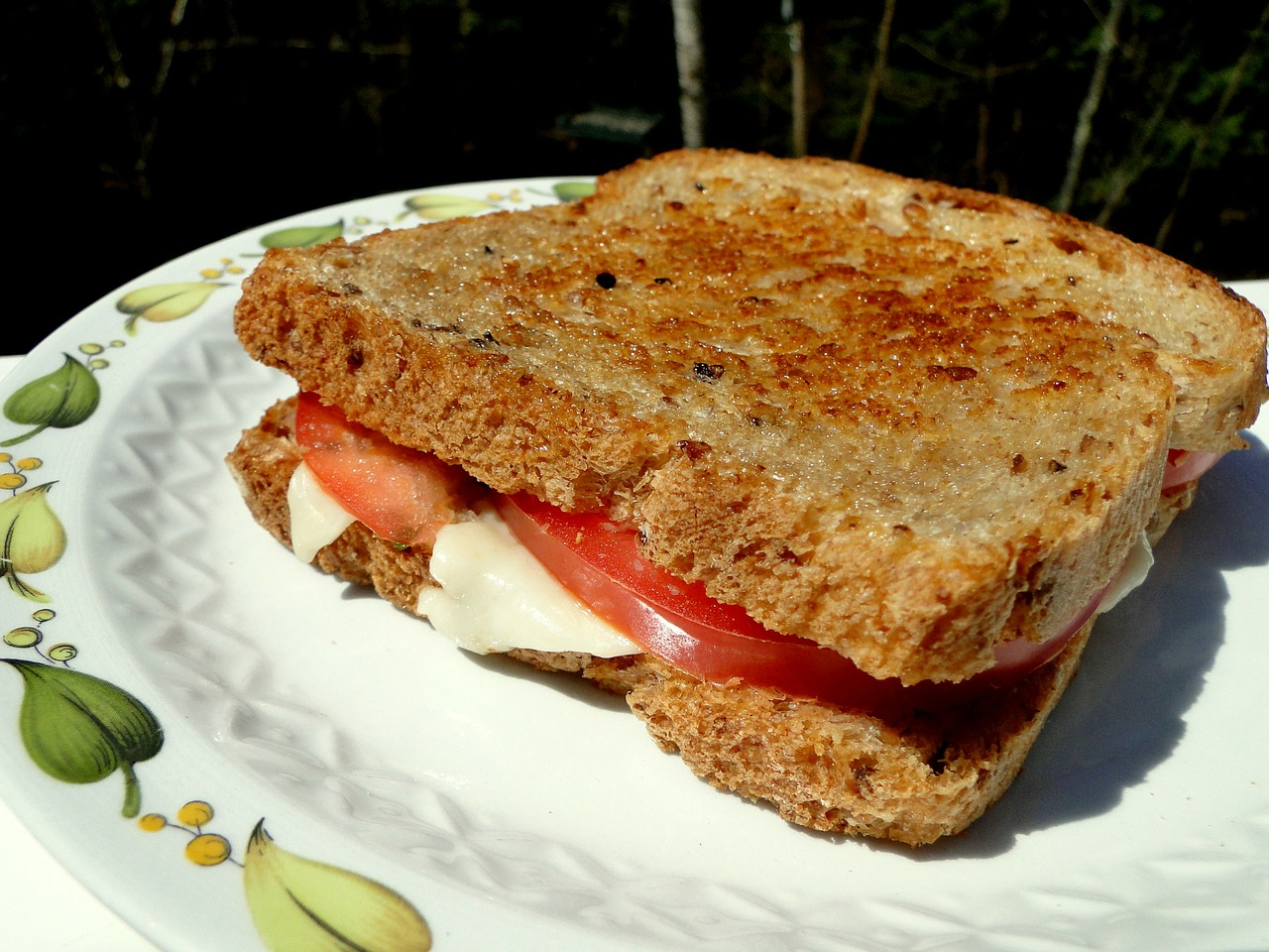 sandwich lunch grilled cheese free photo