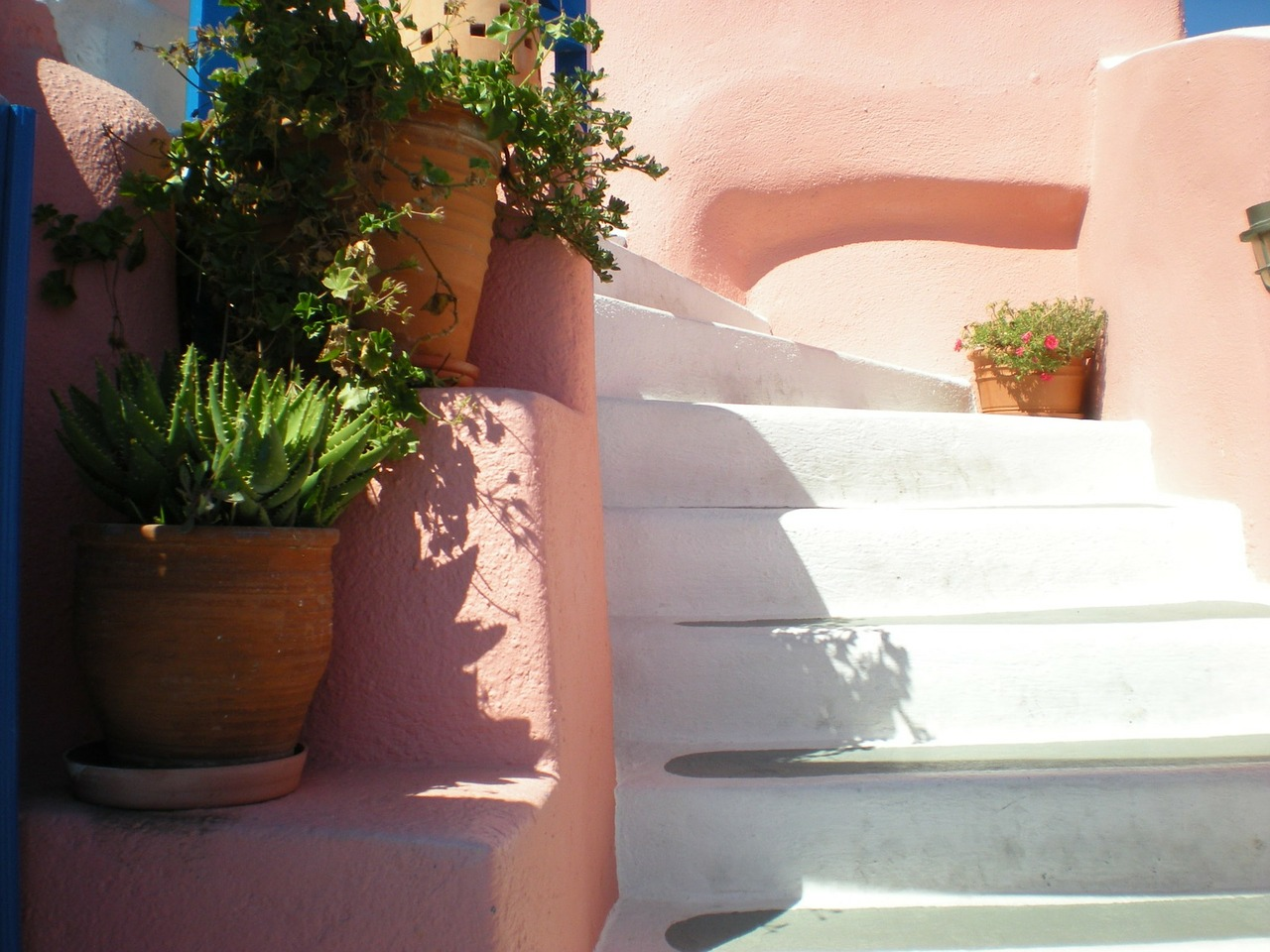 santorini stair flowers free photo