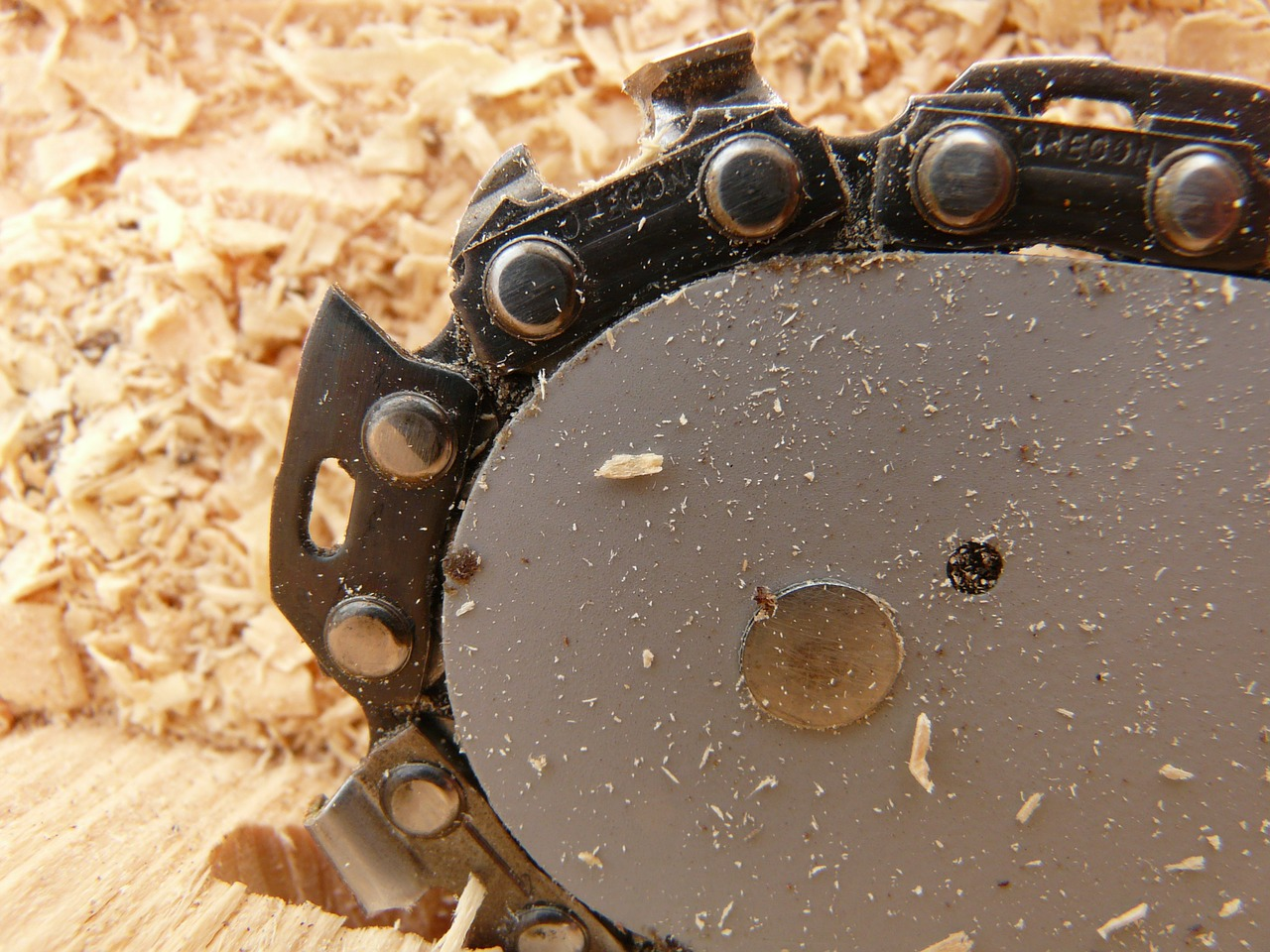 saw chainring chainsaw free photo