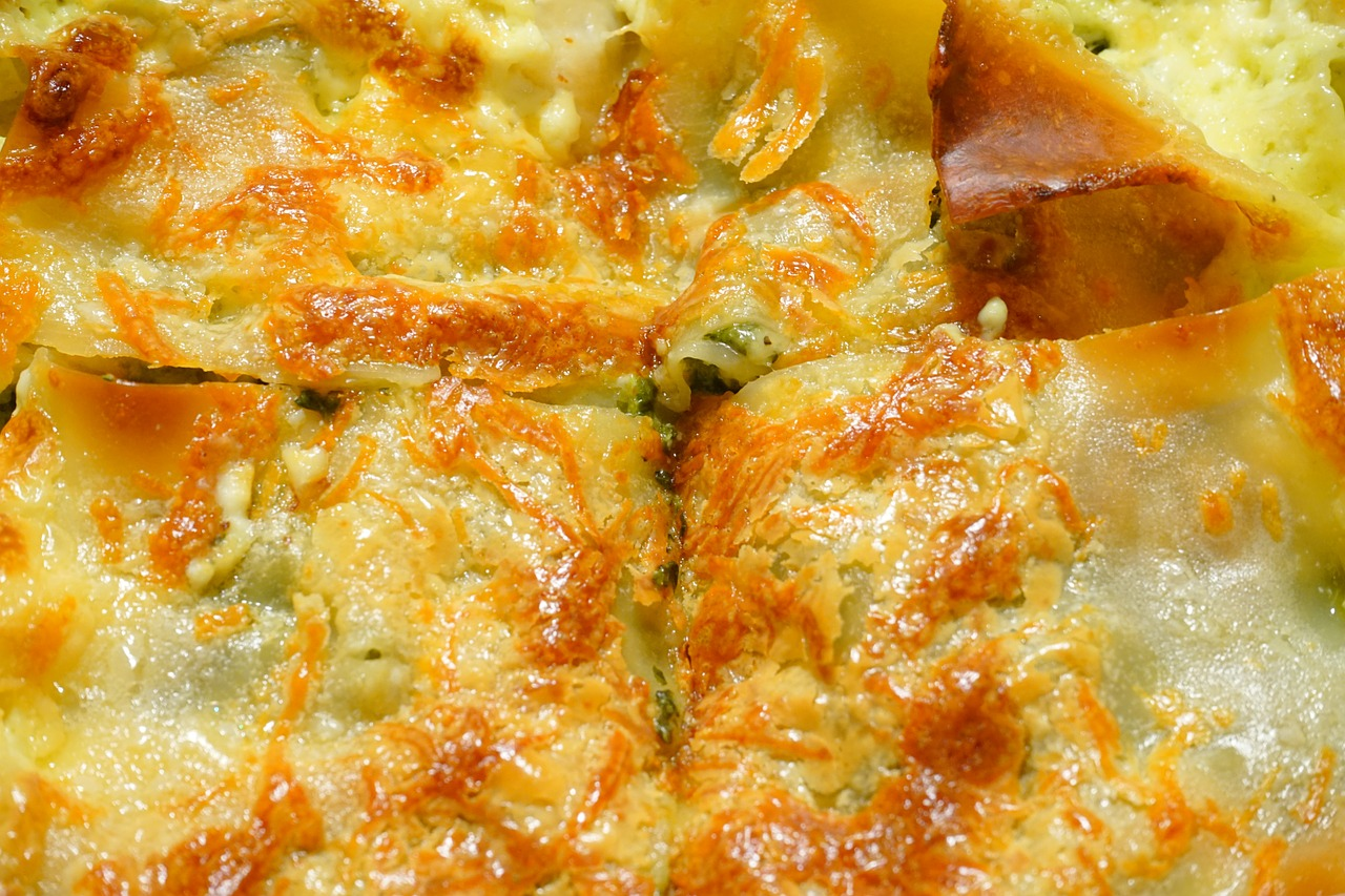 scalloped cheese casserole free photo