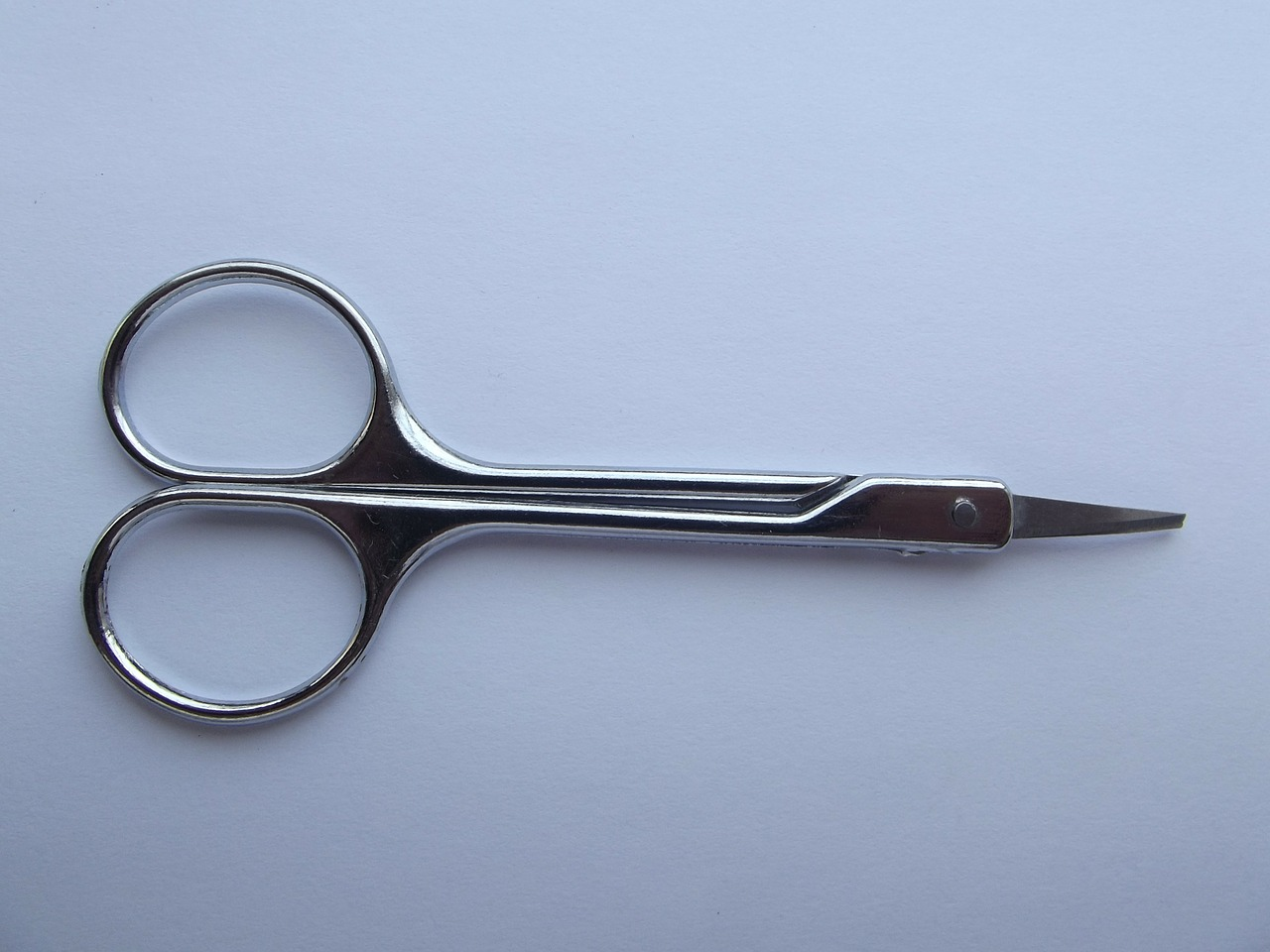 scissor scissors button free photo