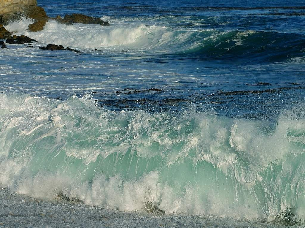 sea surf wave free photo