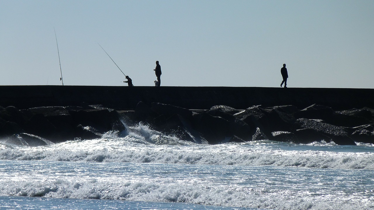 sea back light angler free photo