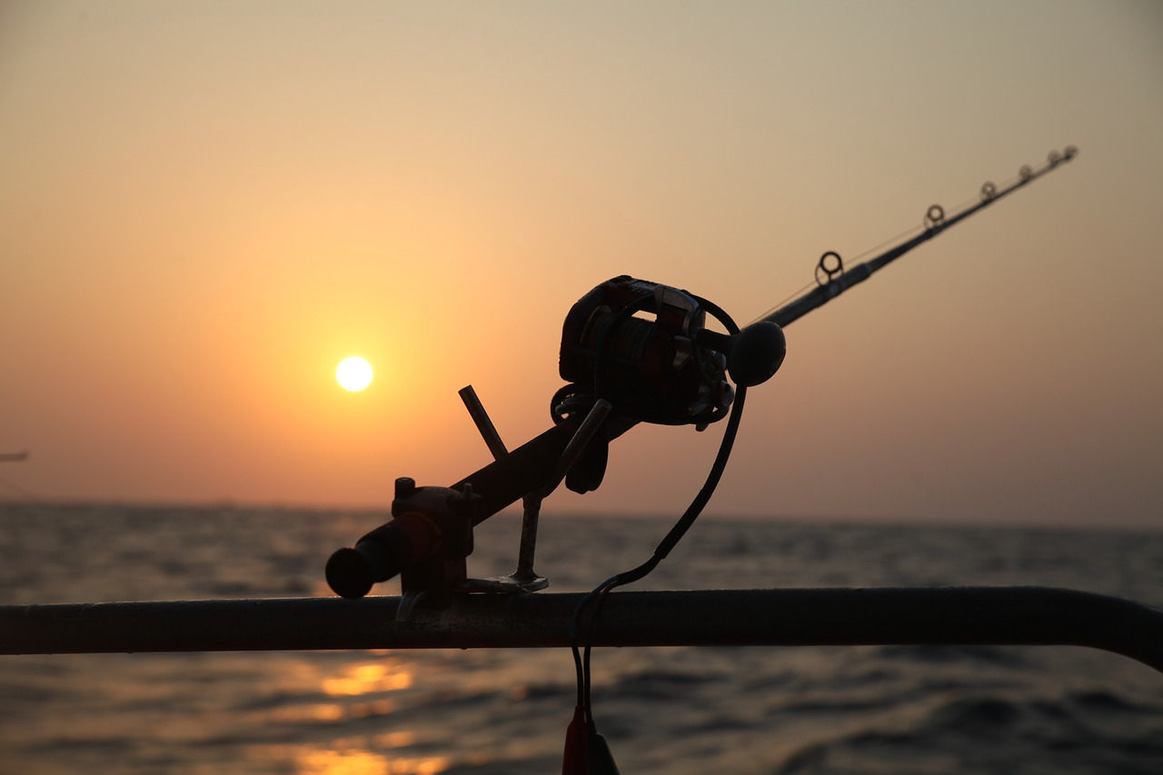 Download free photo of Sea fishing,reel fishing,electric drill ...