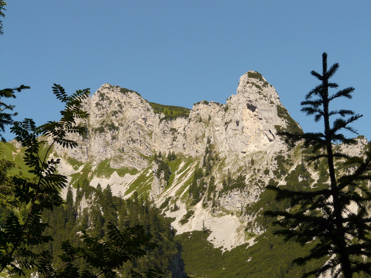 sebenspitze mountain alpine free photo