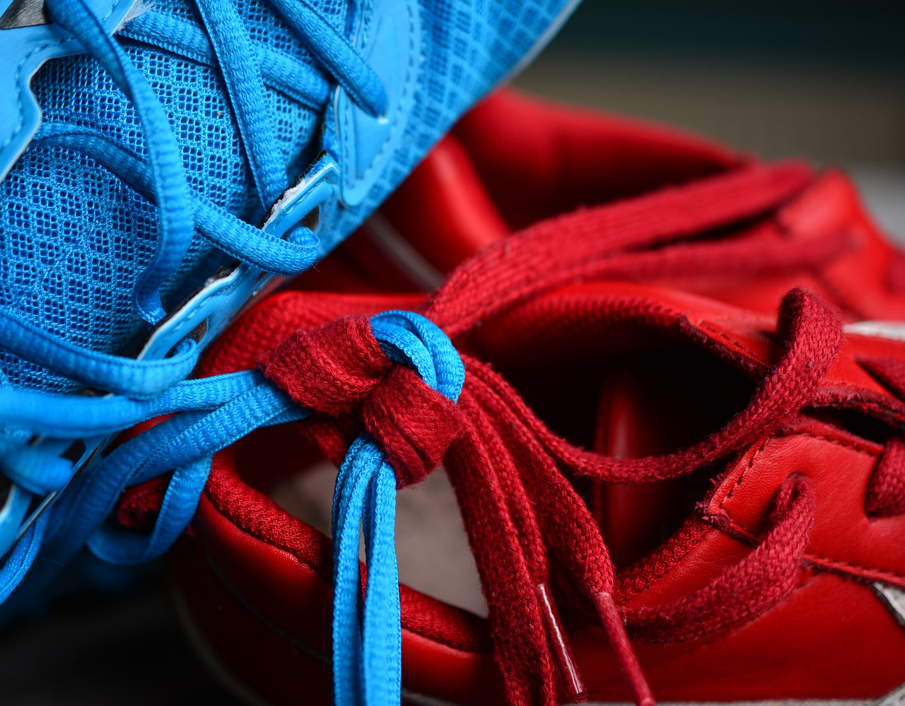 shoelace,knot,knotted,together,keep together,connection,partnership,partner,shoes,for two,shoelaces,bind,strong together,symbolism,red,blue,free pictures, free photos, free images, royalty free, free illustrations, public domain