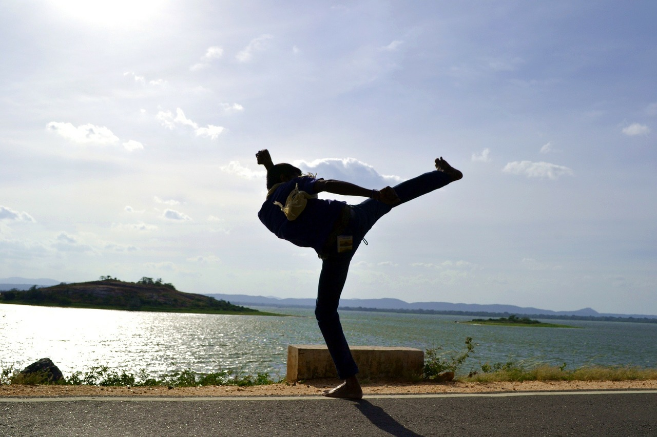 side kick kick martial arts free photo