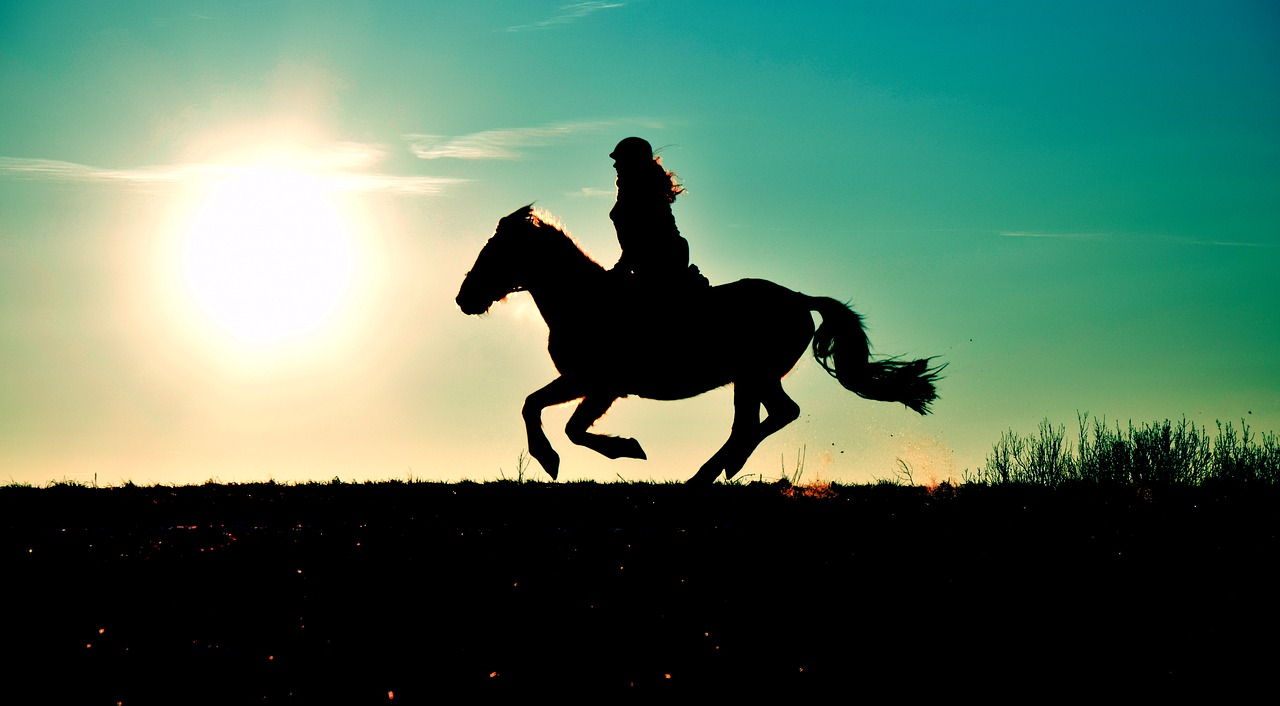 silhouette gallop reiter free photo