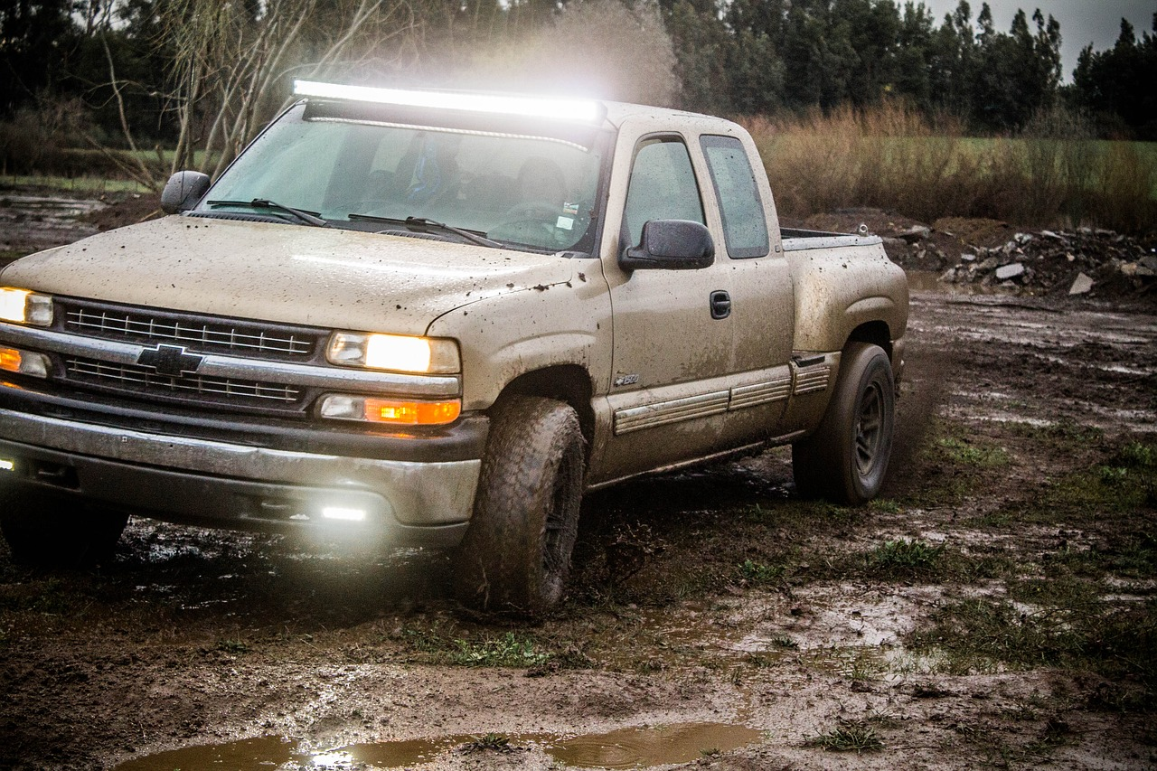 silverado,4 x 4,mud,water,herbs,dirty water,offroad,free pictures, free photos, free images, royalty free, free illustrations, public domain