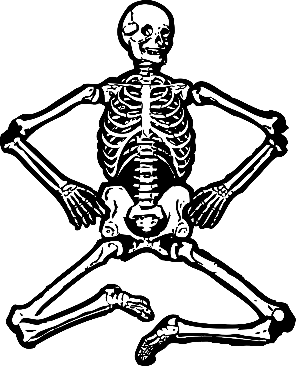 skeleton,human skeleton,bones,skull,skeletal,free vector graphics,free pictures, free photos, free images, royalty free, free illustrations, public domain