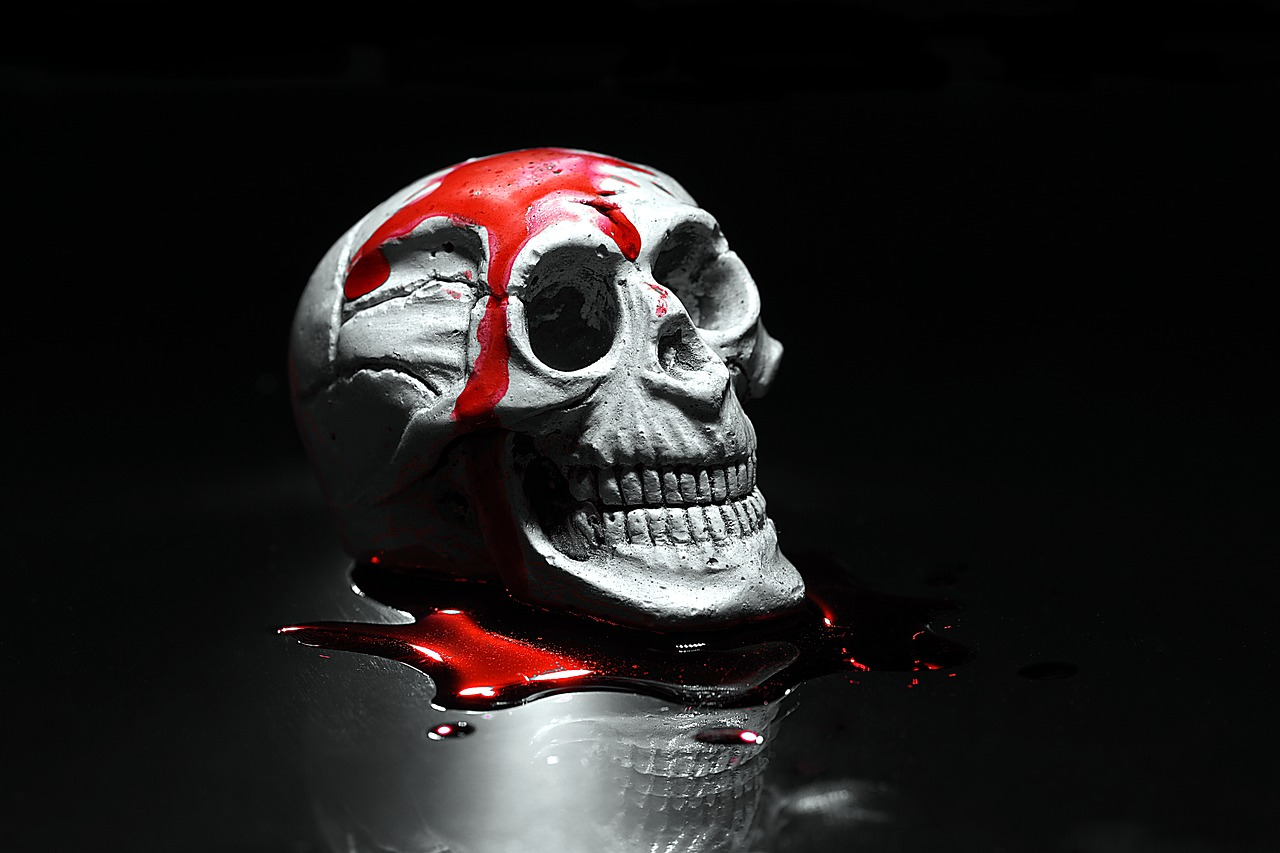 skull halloween horror movie free photo