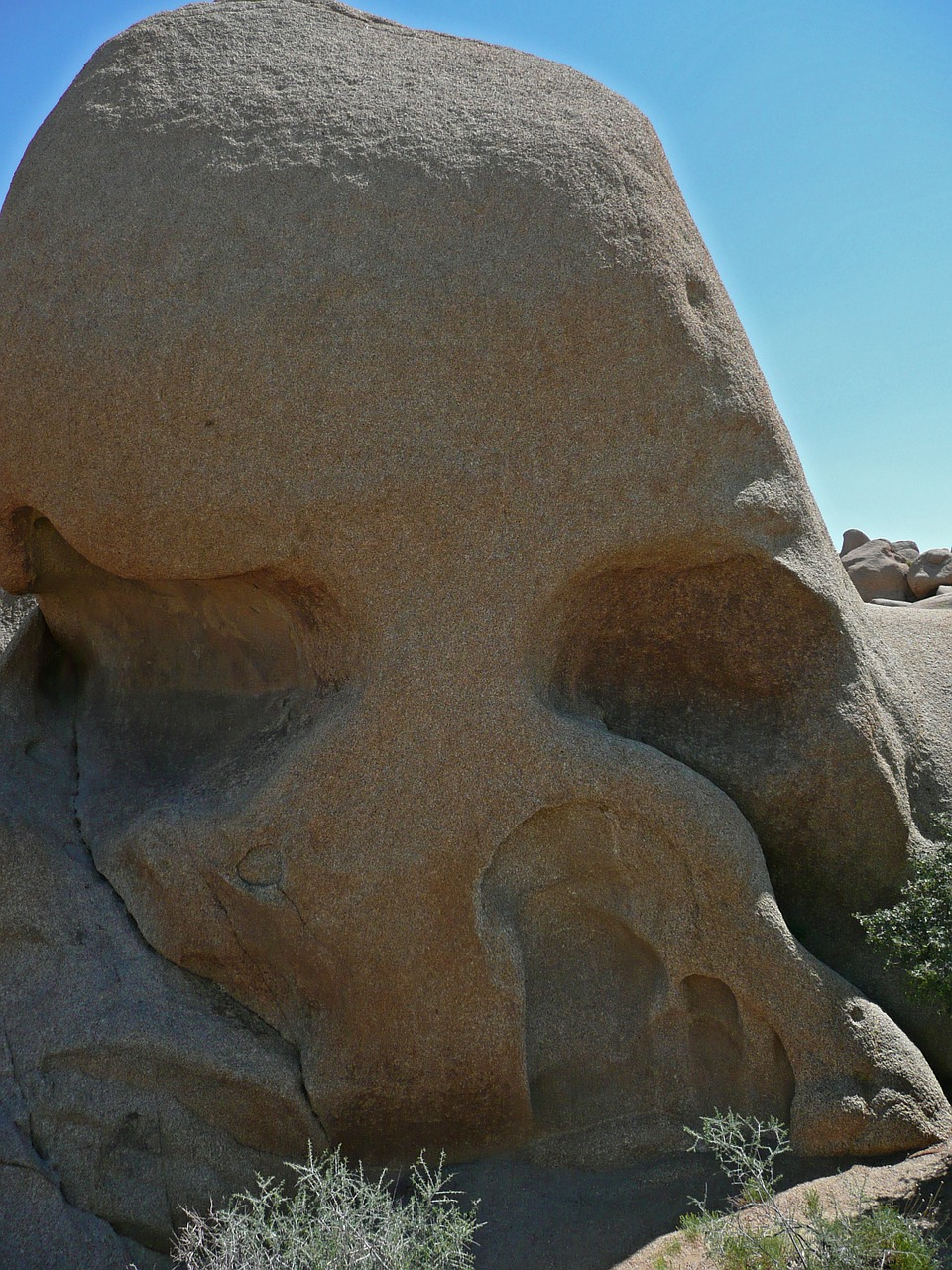 skull rock joshua tree national park tourist attraction free photo