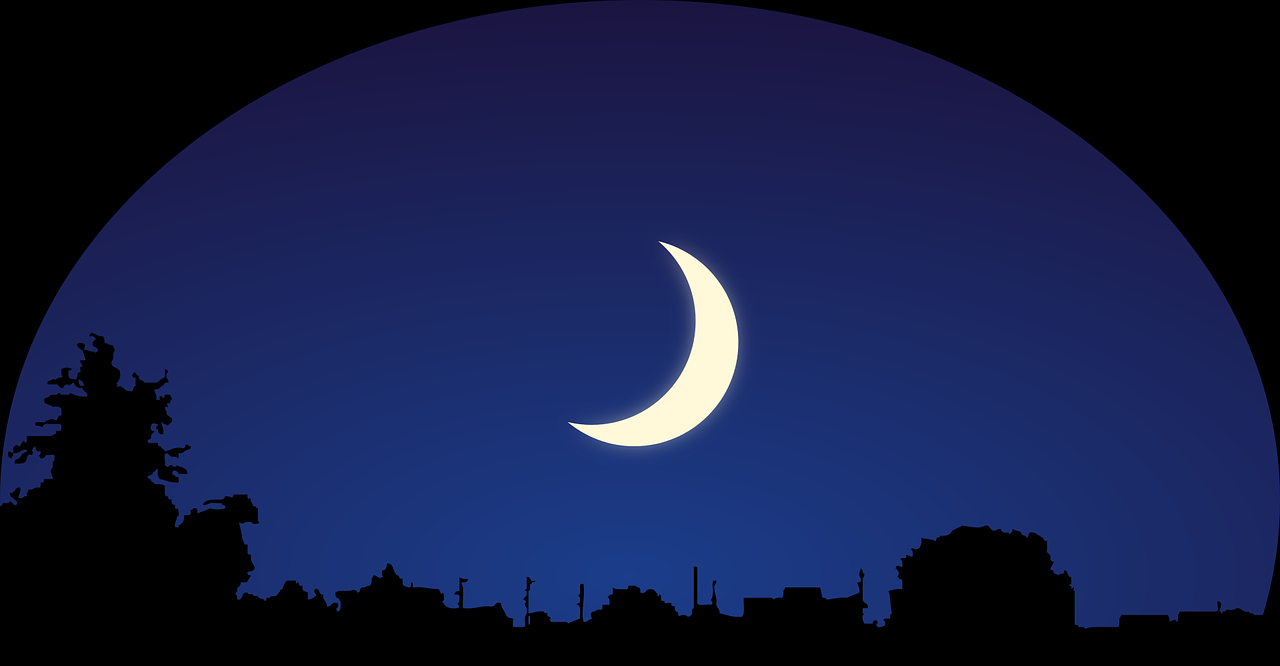 sky,moon,silhouette,night,crescent moon,bushes,trees,good night,sleep,dreams,dream,free vector graphics,free pictures, free photos, free images, royalty free, free illustrations, public domain