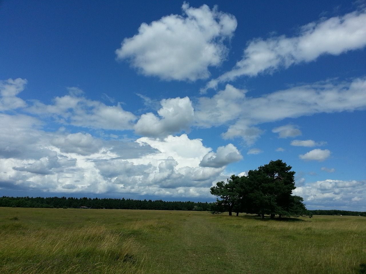 sky clouds heathland free photo