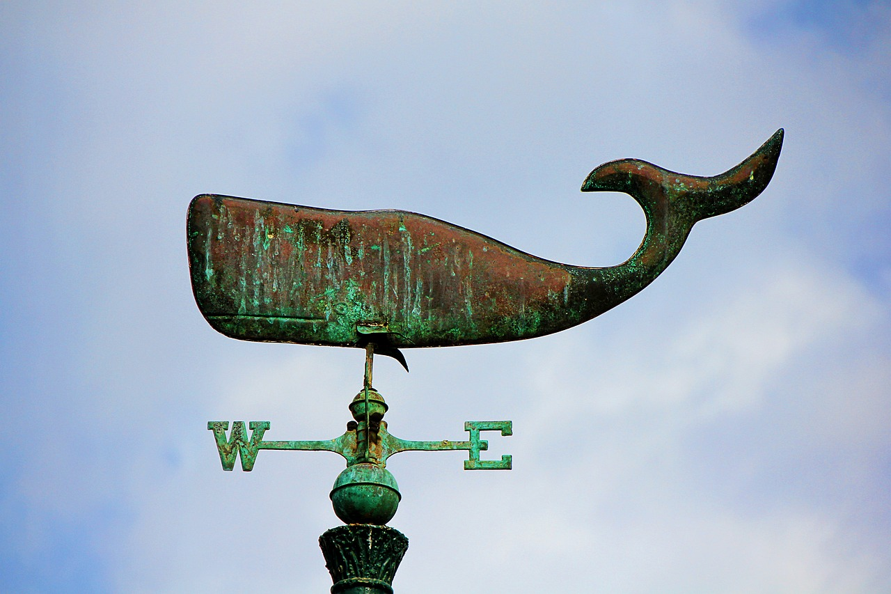sky,wind direction,west,east,anemometer,weather vane,wal,sheet,metal,iron,stainless,patina,free pictures, free photos, free images, royalty free, free illustrations, public domain