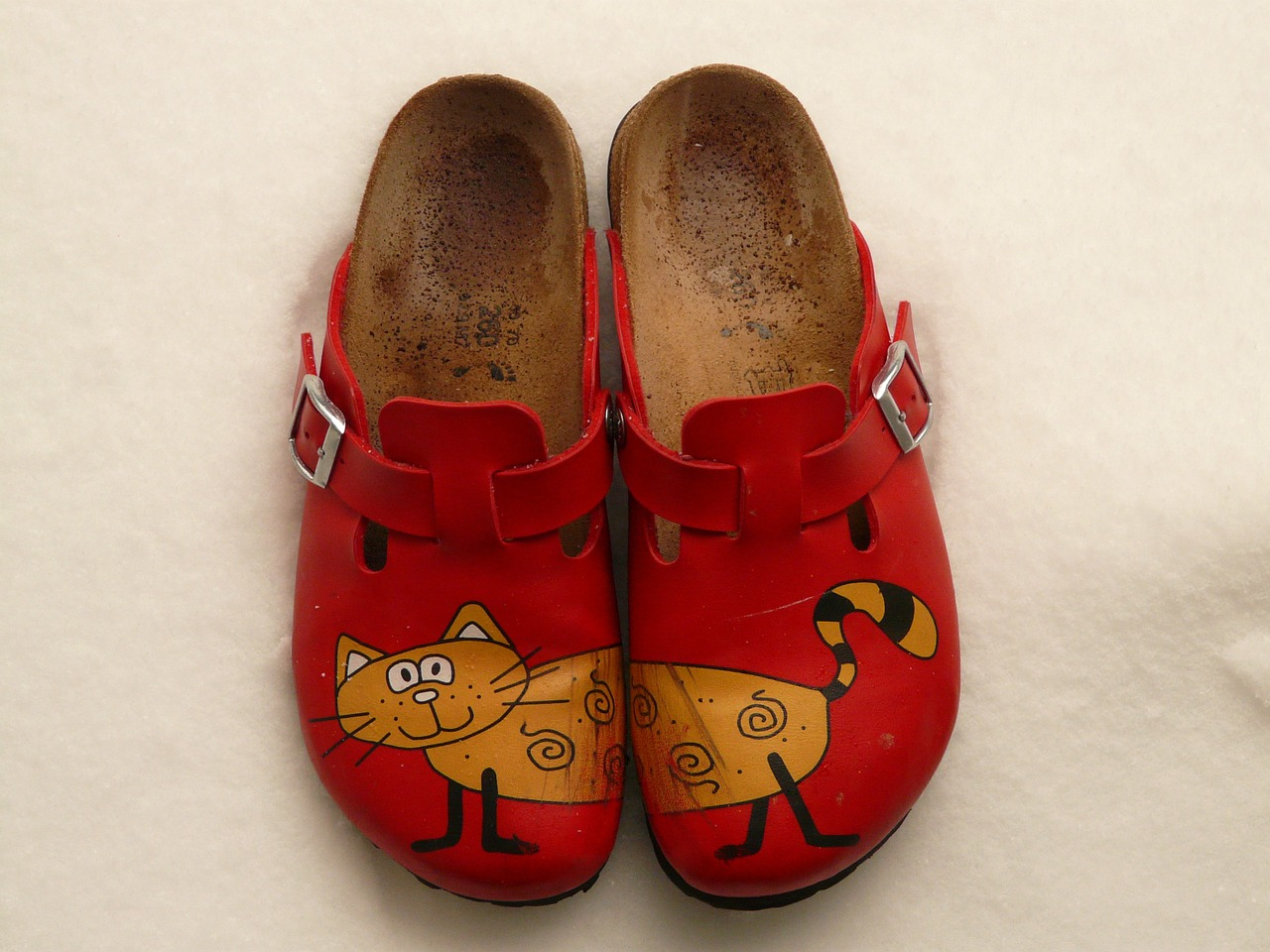 slippers,birkenstock,cat,red,colorful,shoe,run,go,clothing,free pictures, free photos, free images, royalty free, free illustrations, public domain