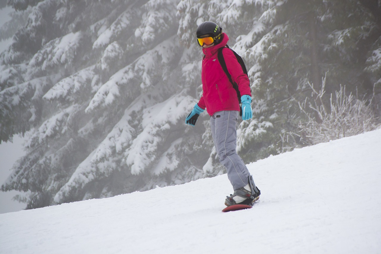 snowboarder skier winter free photo