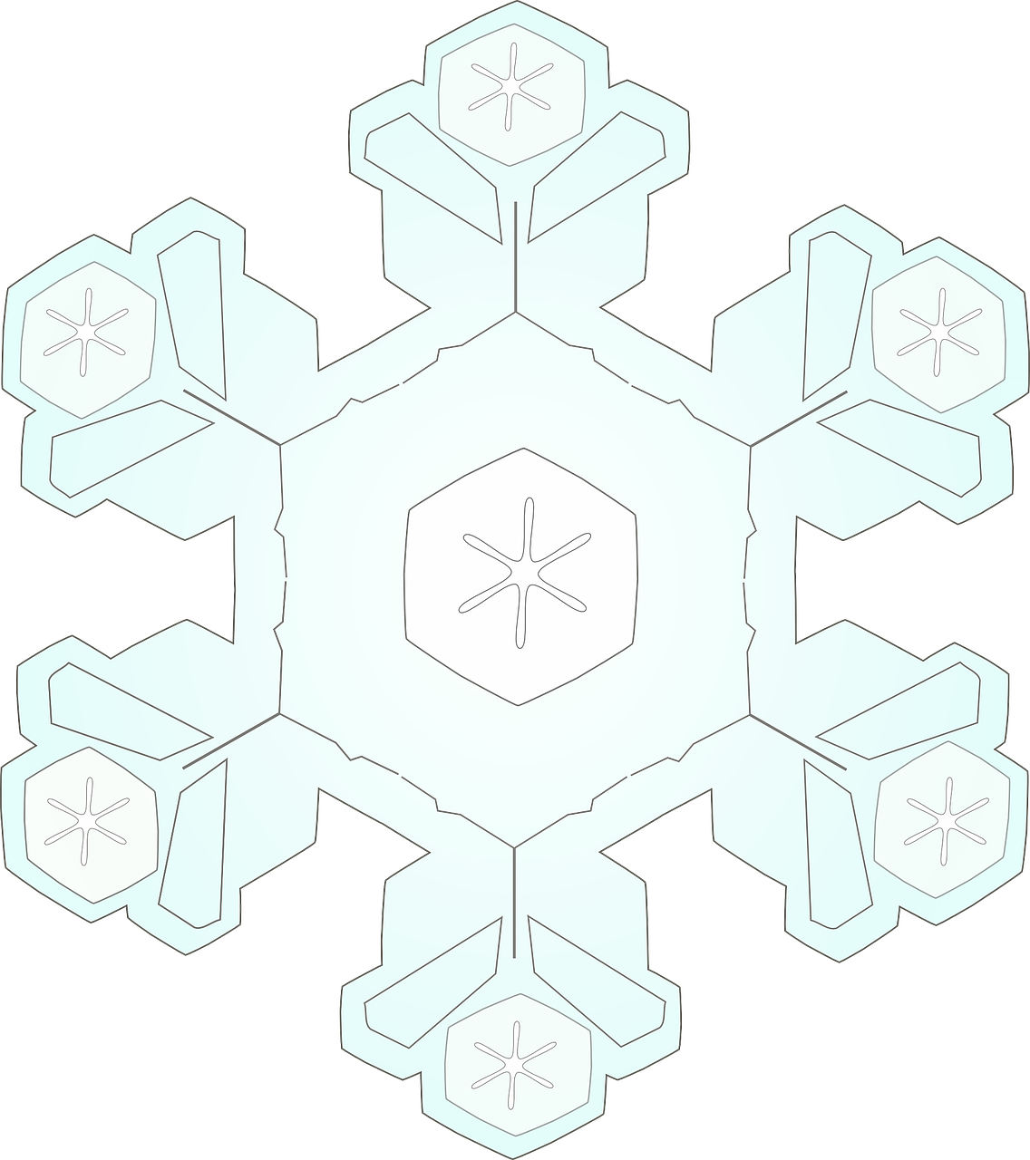 snowflake ice crystal snow free photo