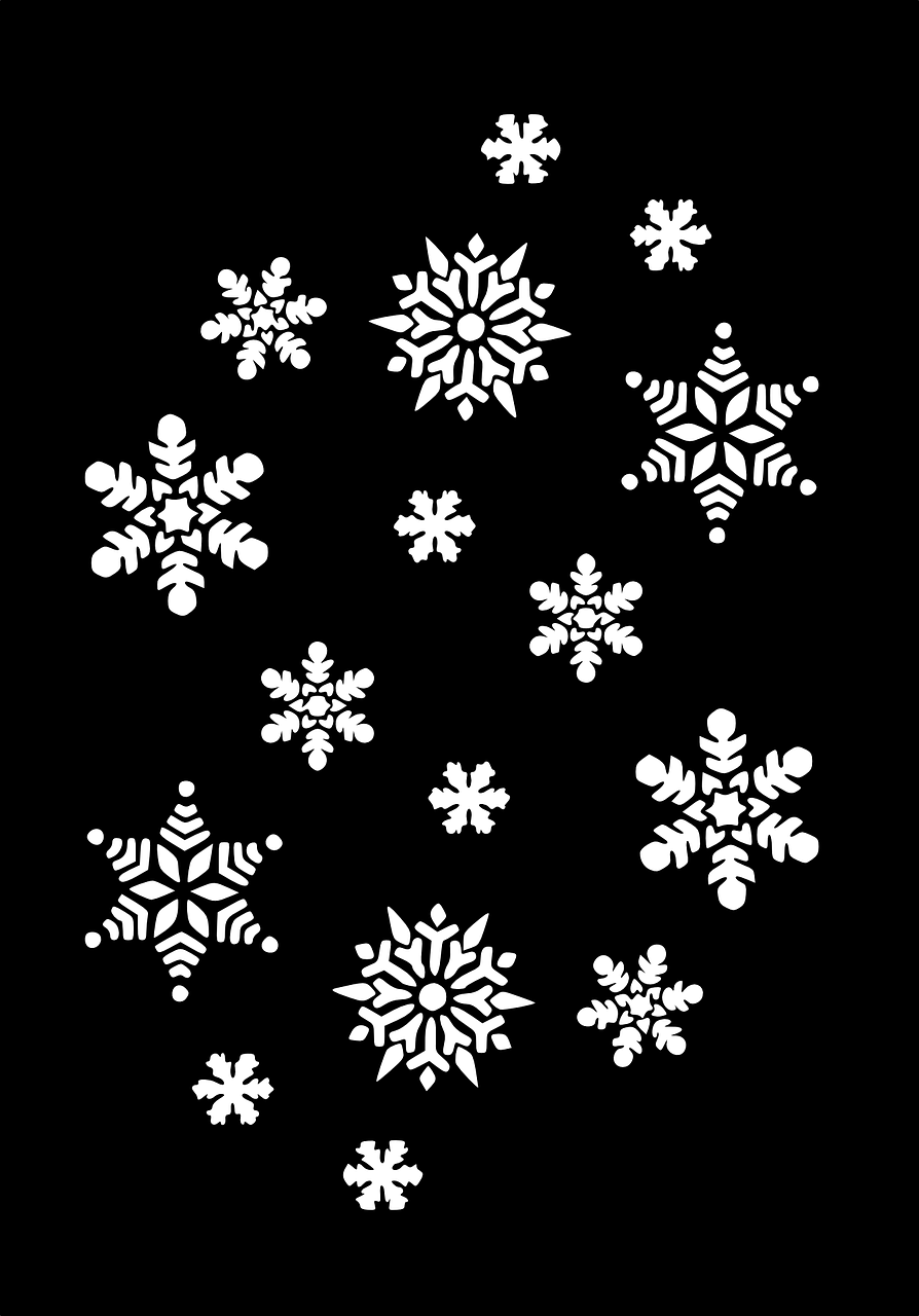 snowflakes snow flakes snow crystals free photo