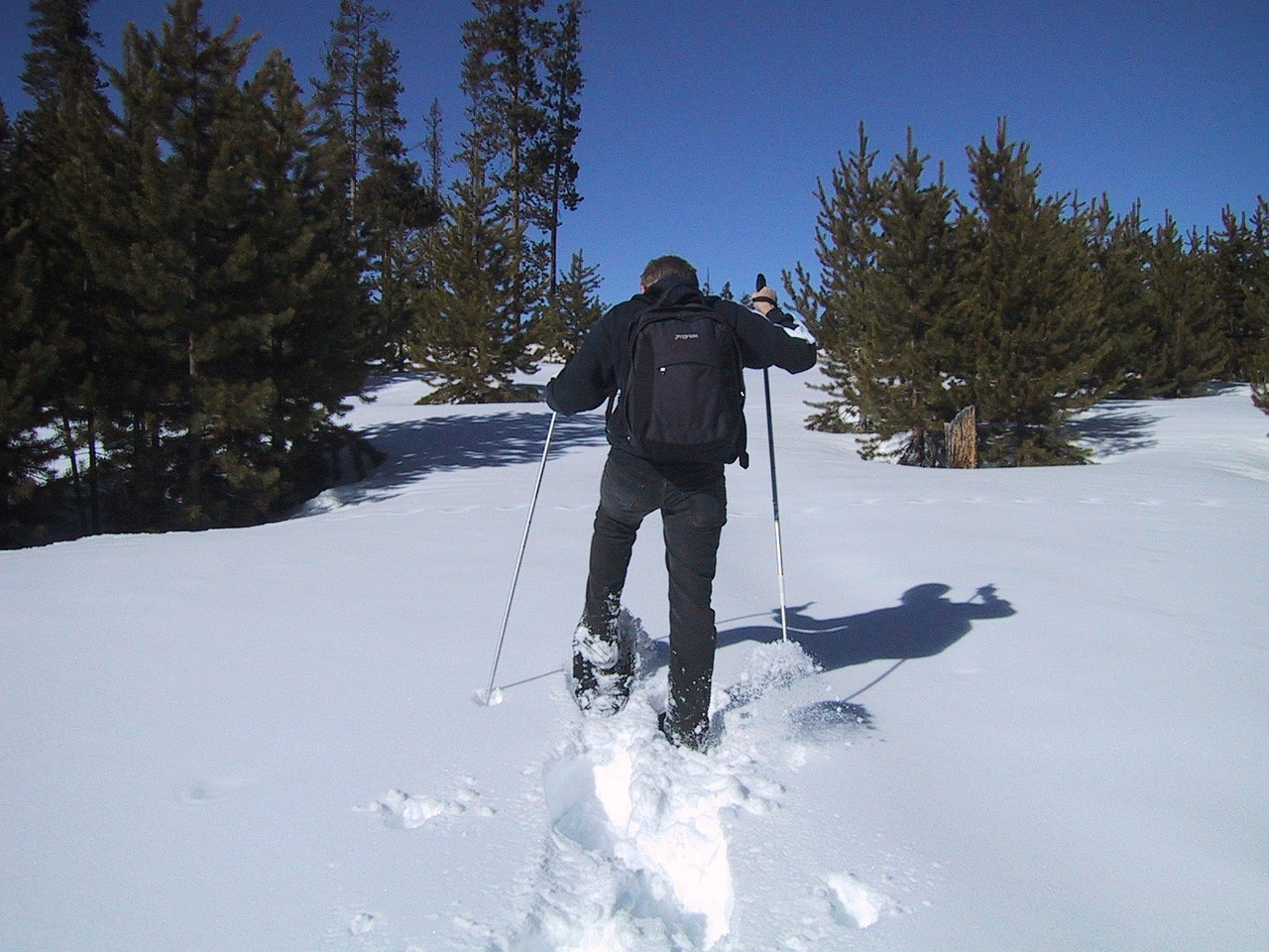 snowshoeing snow shoes snow free photo