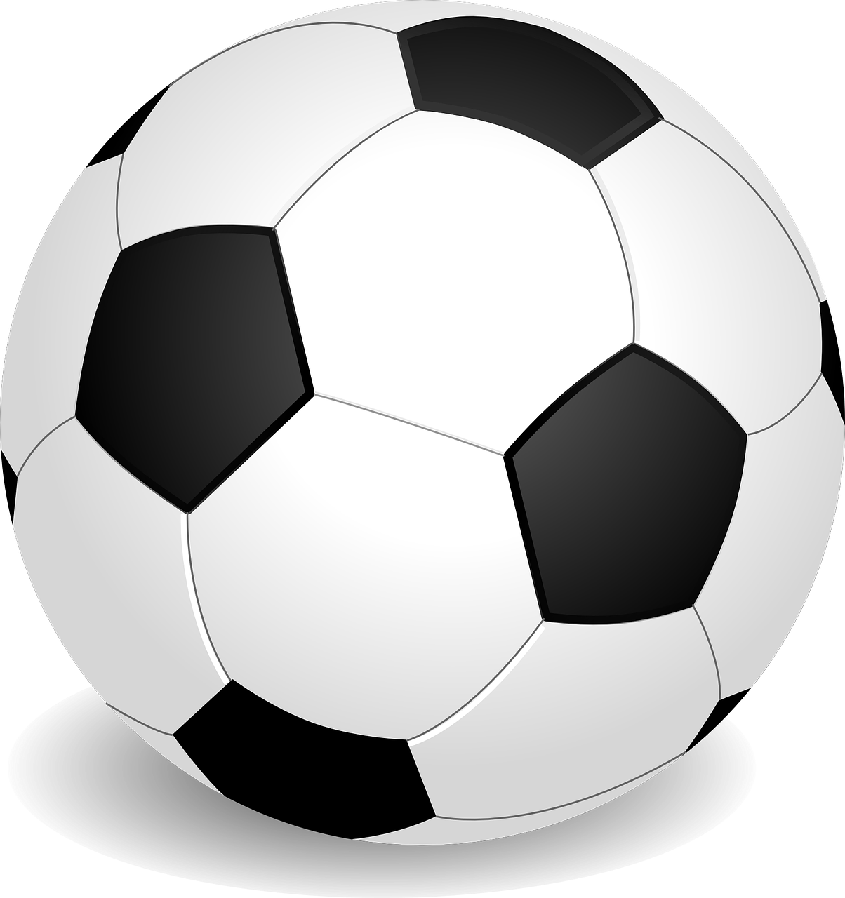 soccer ball sport free photo