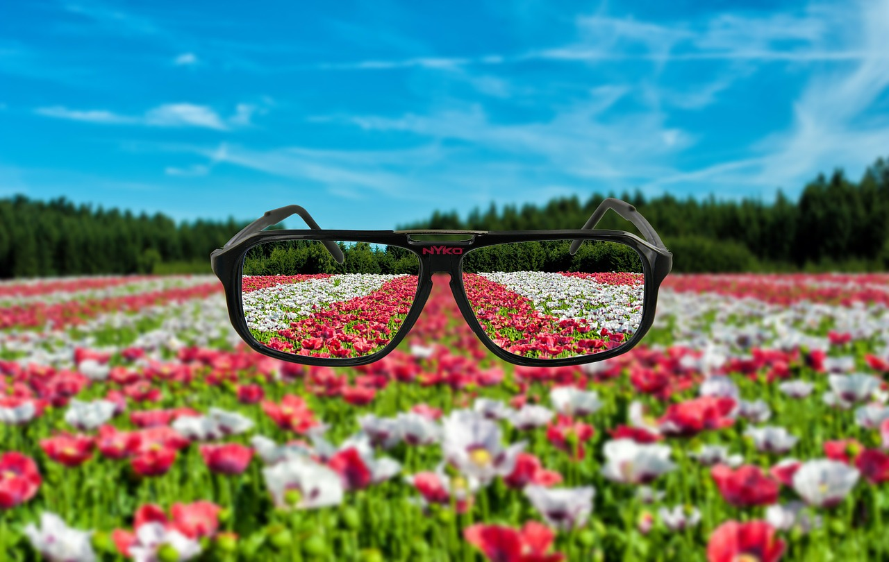 spectacles glasses frame free photo
