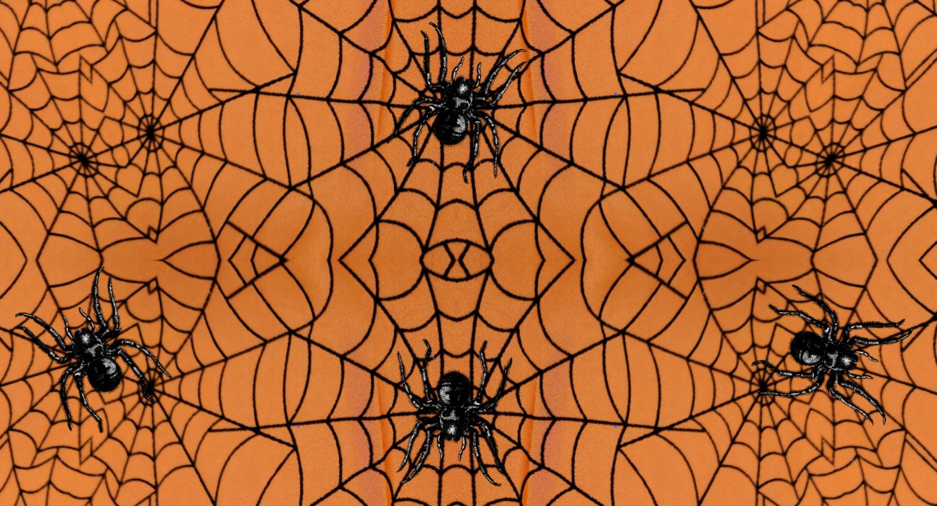 картинки фоны паутина помогают детям