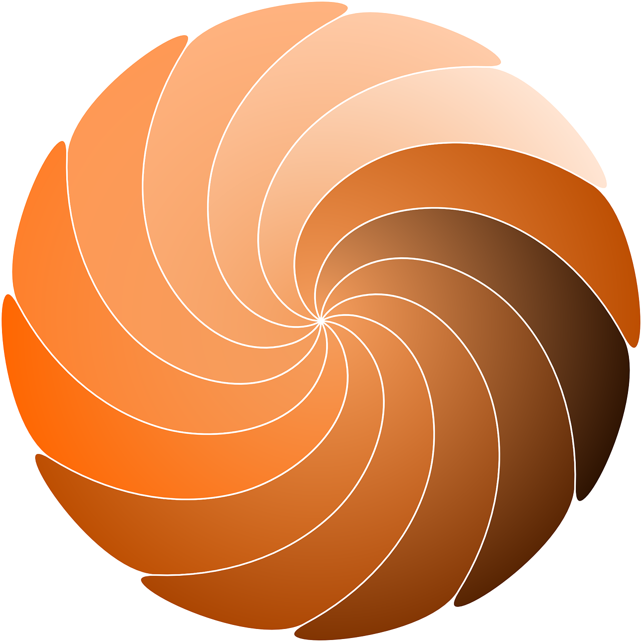 spiral,circle,swirl,whorl,design,colour,wheel,curl,free vector graphics,free pictures, free photos, free images, royalty free, free illustrations, public domain