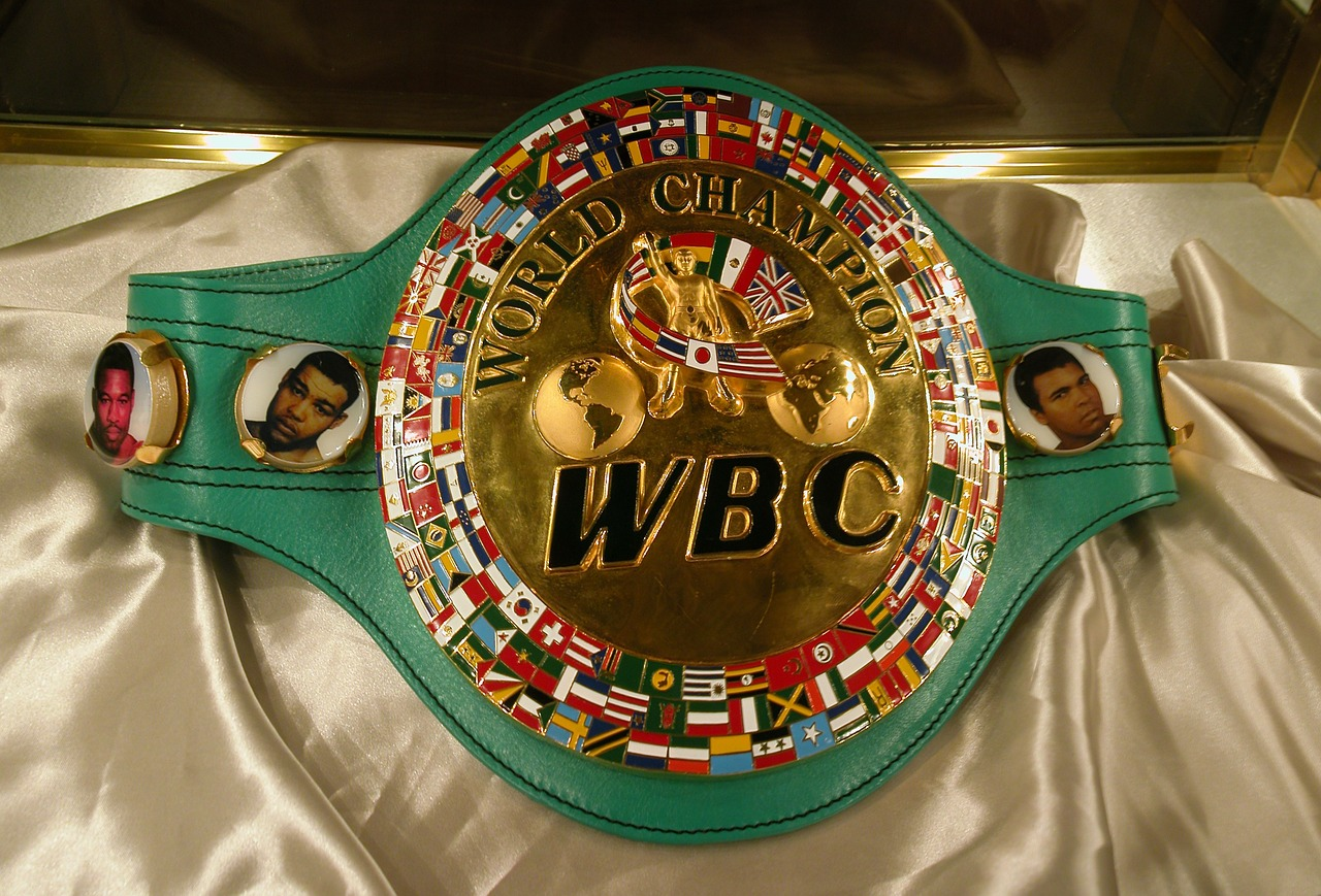 sport history world boxing council championship belt free photo