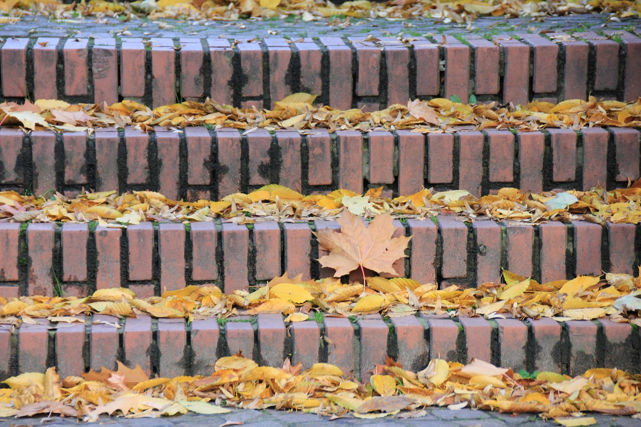 stairs autumn jahreseit free photo