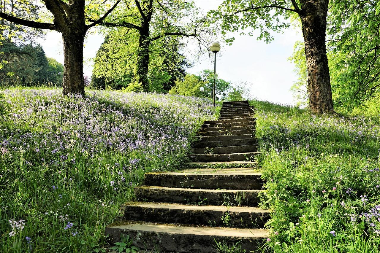 Download Free Photo Of Stairs Park Garden Baden Baden Meadow