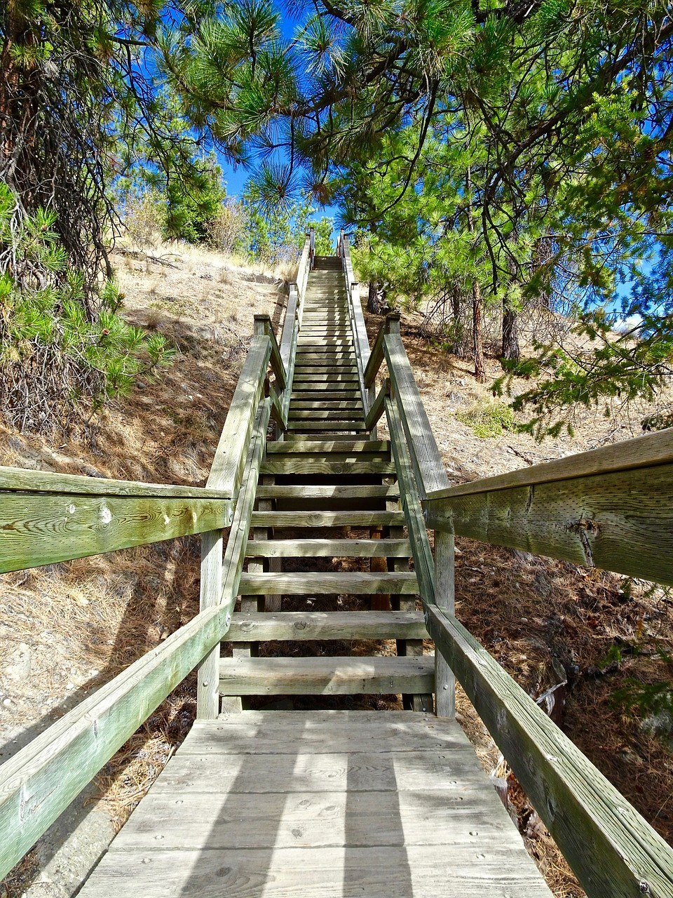 Stairway,perspective,staircase,construction,walkway - free photo