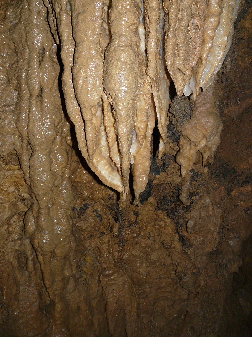stalactite cave cave tour free photo