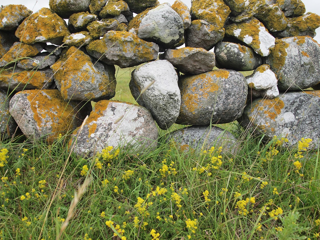 stone wall gotland summer free photo
