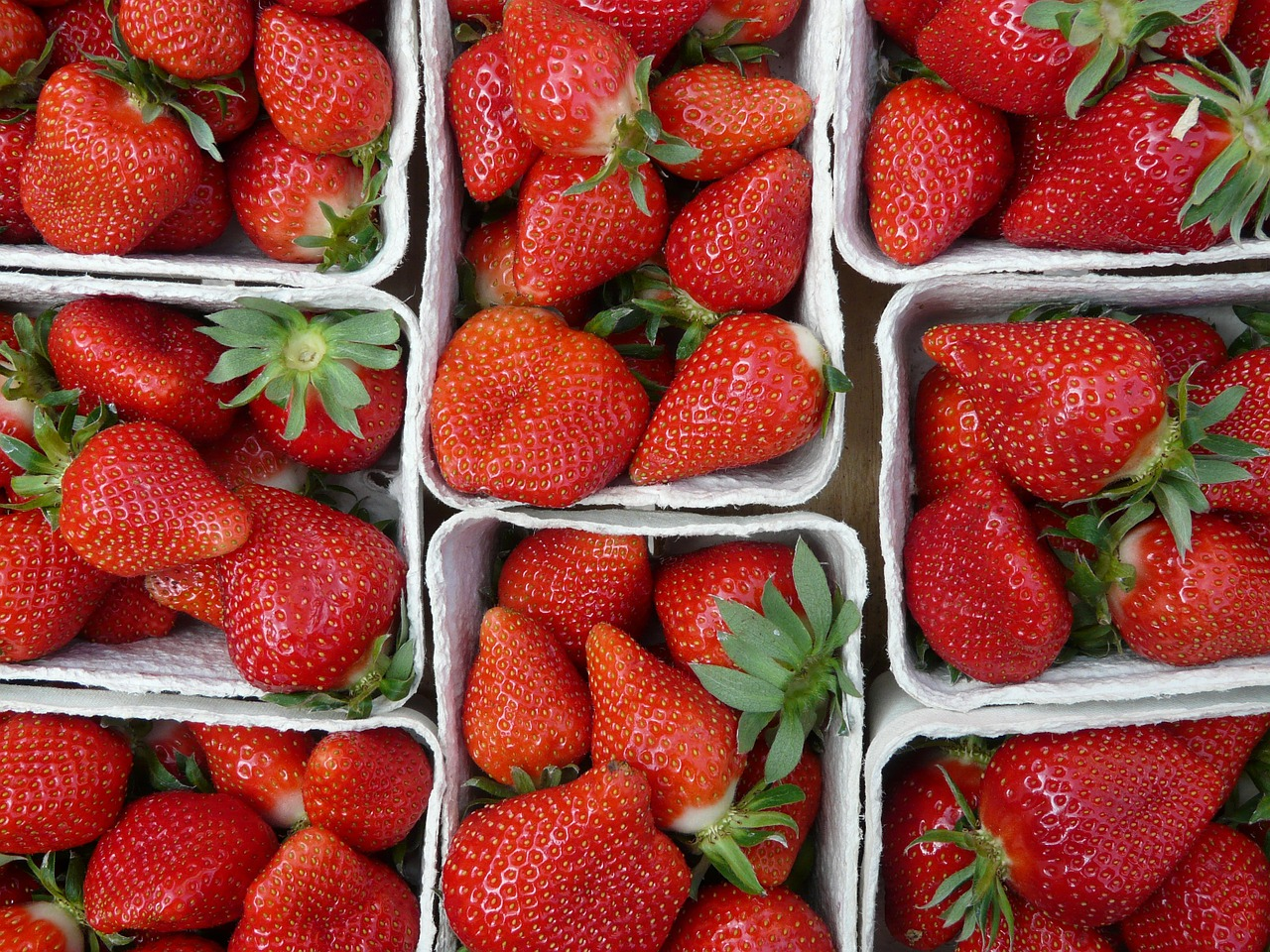 strawberries fruit red free photo
